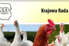 KRD-IG krytycznie o projekcie zakazu hodowli zwierząt futerkowych oraz ograniczenia uboju religijnego