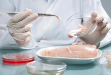 Mikroorganizmy rozwijające się w warunkach chłodniczych
